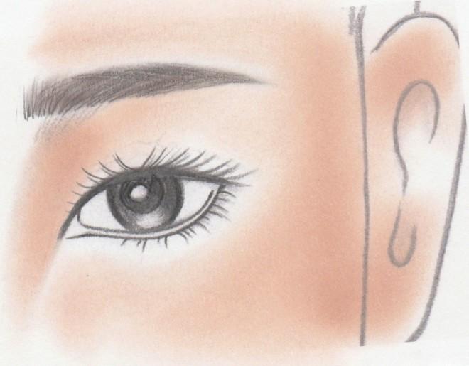 四角の眉頭・直線的な眉[1]
