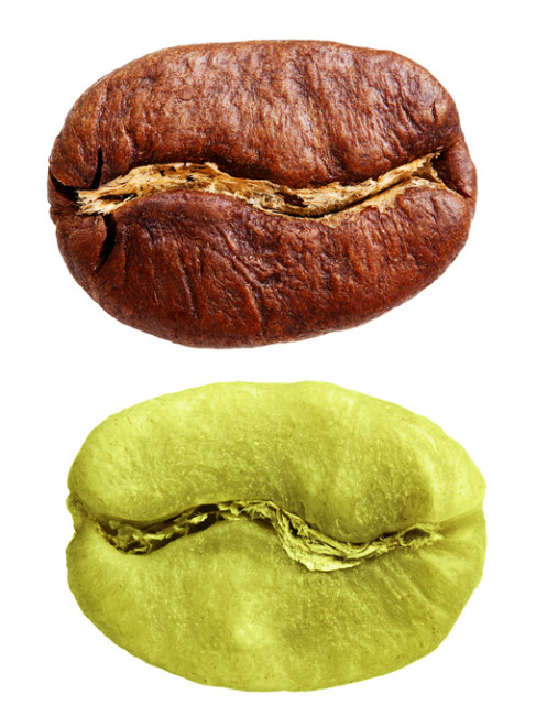 Green and black coffee beans isolated