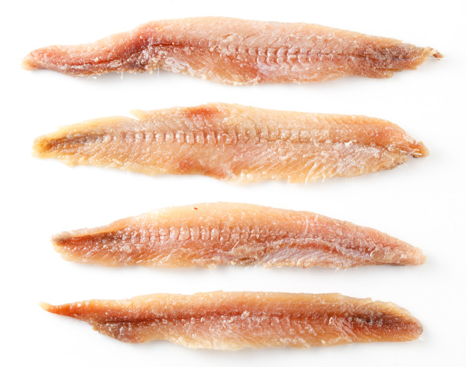 Anchovy. Fillet isolated on white