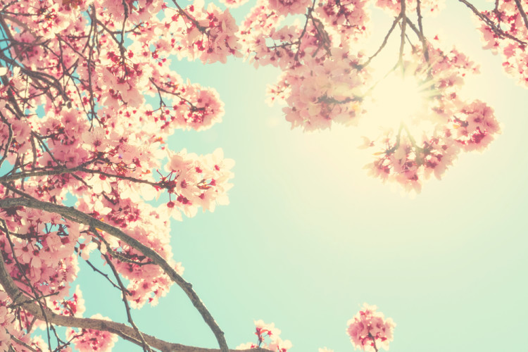 春の紫外線