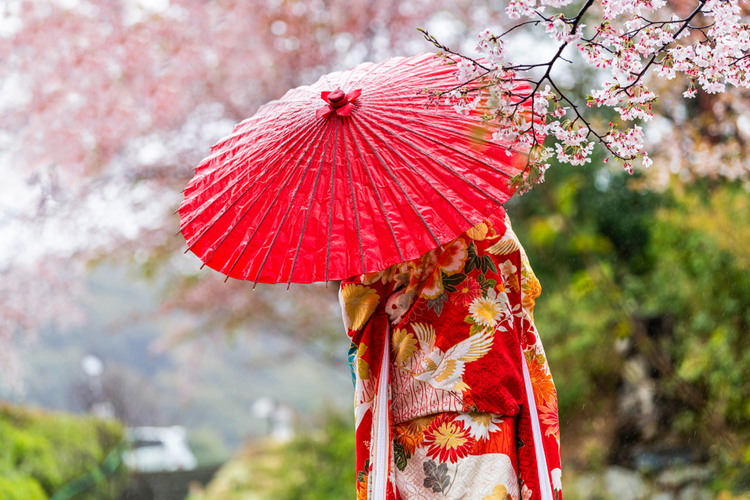 上品で華やかな慶祝カラーで春の訪れを祝おう
