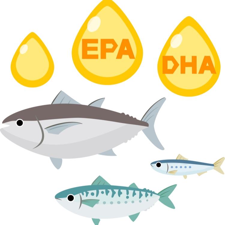 美容女子必見!「EPA」と「DHA」の違い、知っていますか?効果的な摂り方とは